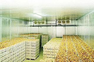 Овощехранилище под ключ в Киеве